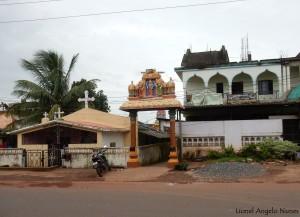 Found in Goa